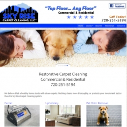 Sky Rise Carpet Cleaning